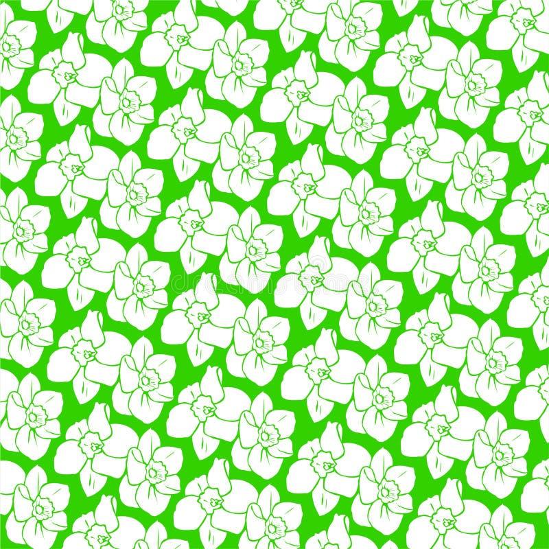 Daffodil ornamentale illustrazione di stock
