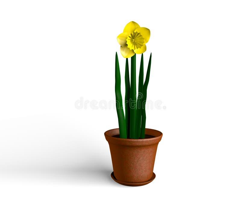 Daffodil Potted ilustração stock