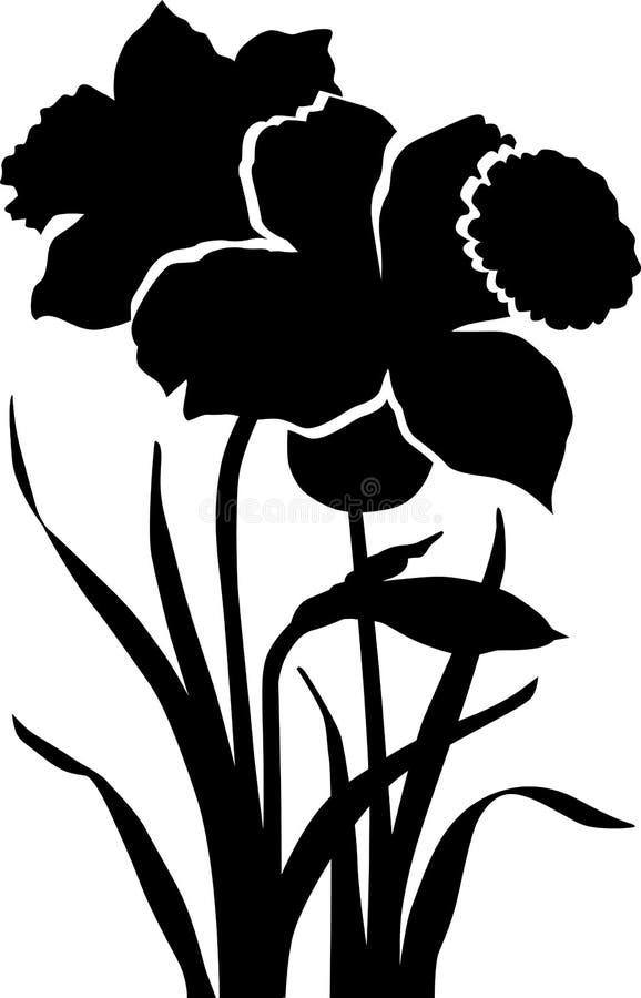 Daffodil preto da flor ilustração royalty free
