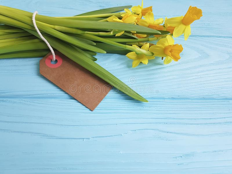 Daffodil wierzbowy sezonowy na błękitnej drewnianej etykietki świeżych nieociosanych gratulacjach obrazy stock