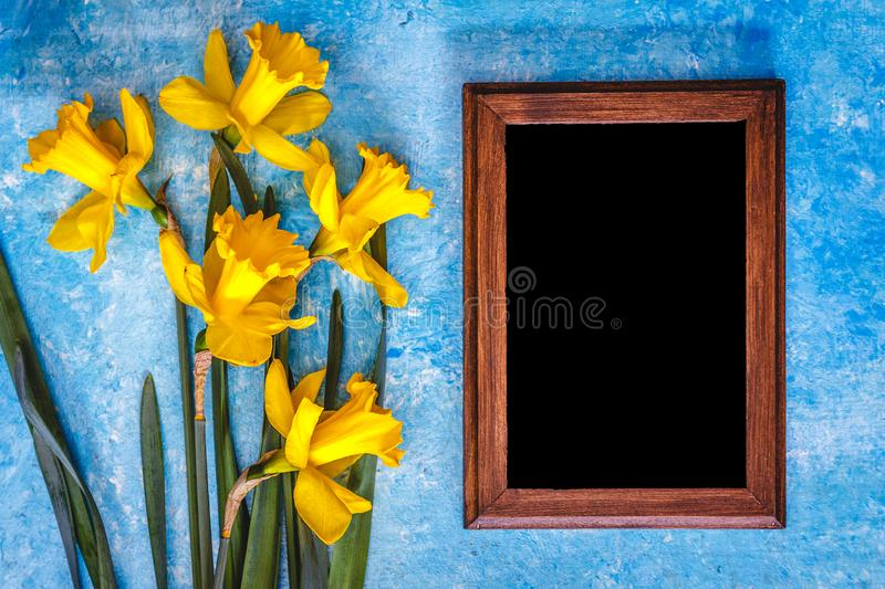 Daffodils and chalk board on a blue bright background. Top view. Copy space.  royalty free stock photography