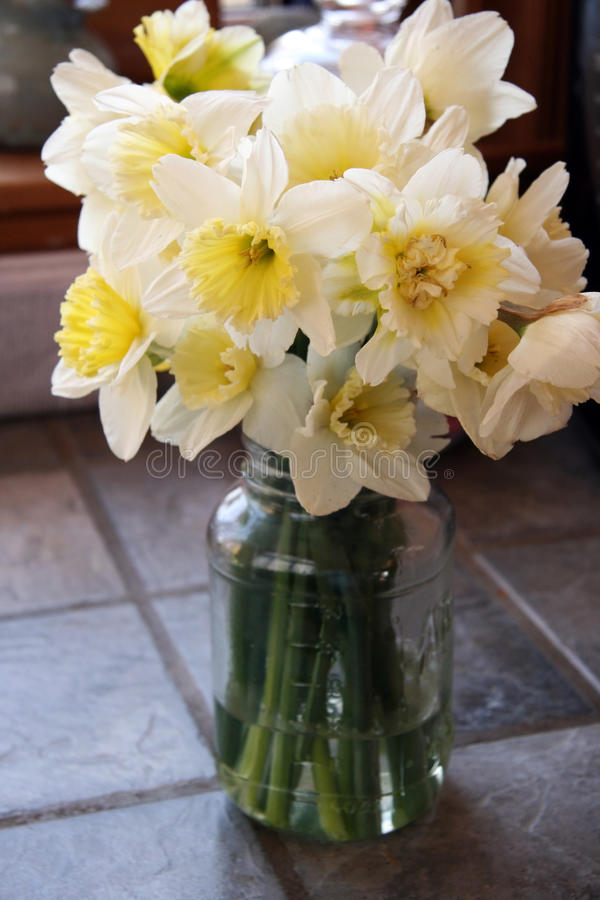 Daffodils in Jar. A bouquet of daffodils in a jar on a slate tile counter stock image