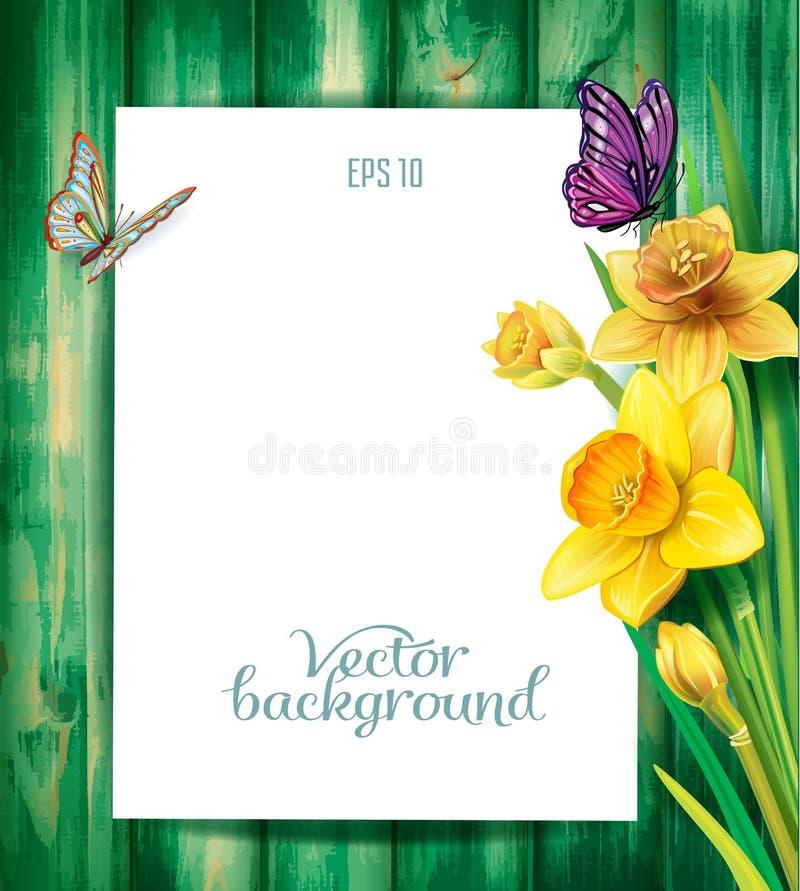Daffodils kwitną na drewnianym tle royalty ilustracja