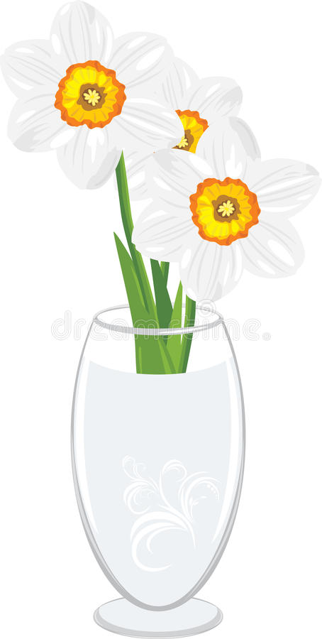 Download Daffodils in a vase stock vector. Image of burgeon, flower - 23939419