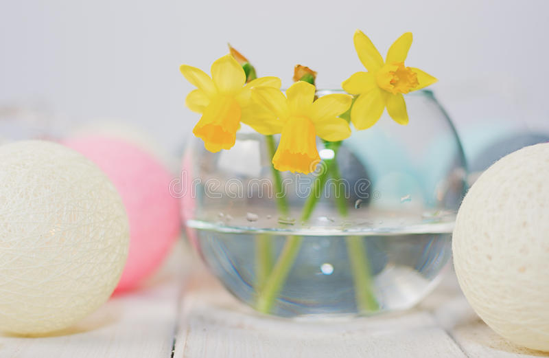 Daffodils in a vase surrounded by round lamps in the form of col stock photos