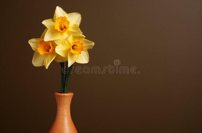 Download Daffodils in Wooden Vase stock image. Image of vase, brown - 4647163