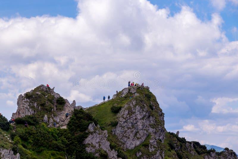Dag-att fotvandra turnerar i slovakiska berg royaltyfri fotografi