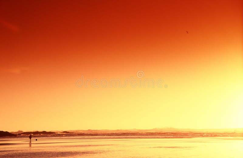 Dag bij het strand stock foto