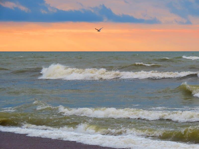Dag för kust för baltiskt hav blåsig, Litauen arkivbild