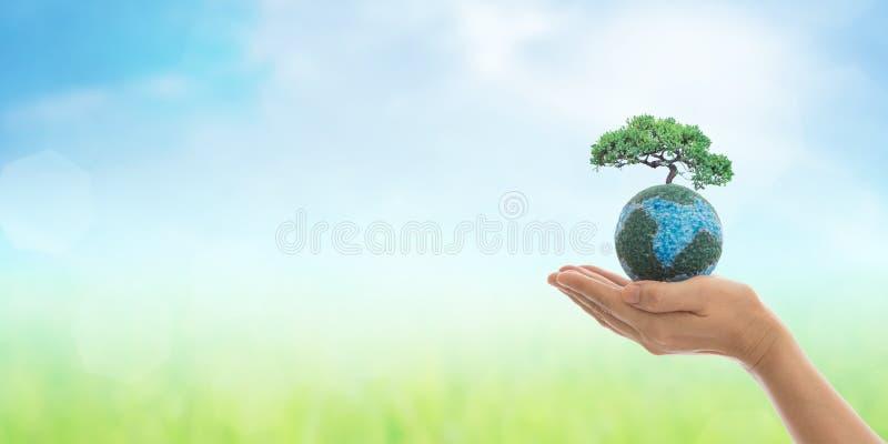 Dag för världsmiljö och gräsplanbegrepp arkivfoto