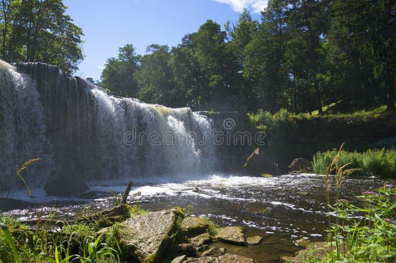 Dag för vattenfallKeila-Joa solig sommar royaltyfri fotografi