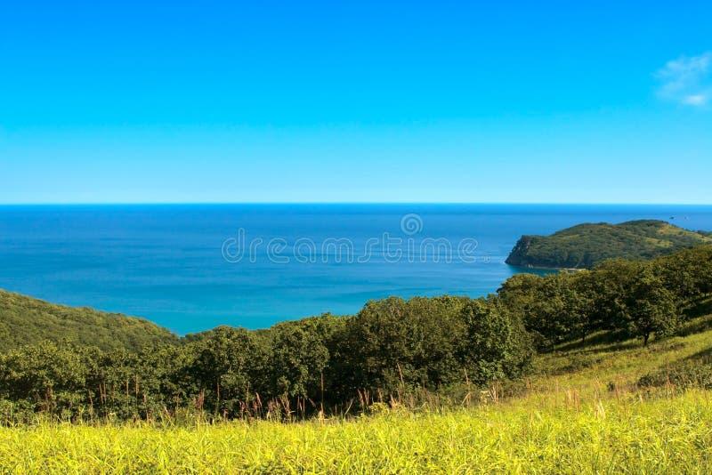 dag nära det soliga havet fotografering för bildbyråer
