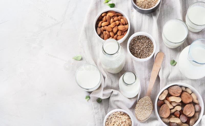 Dagboken för strikt vegetarian mjölkar non arkivbilder