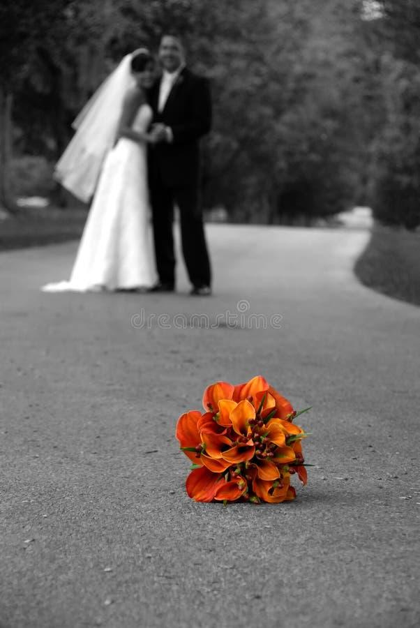 dagbröllop arkivfoton