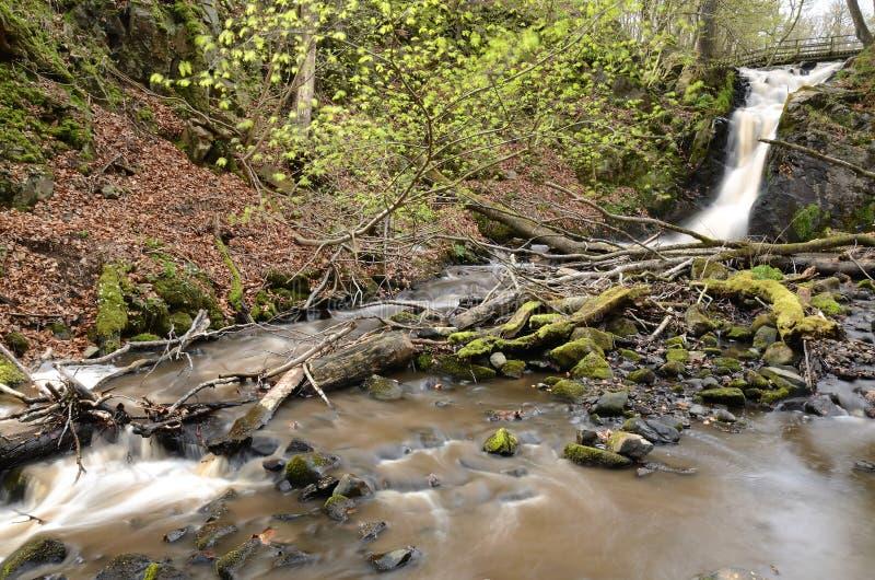 Dageberga Wasserfälle lizenzfreie stockfotos