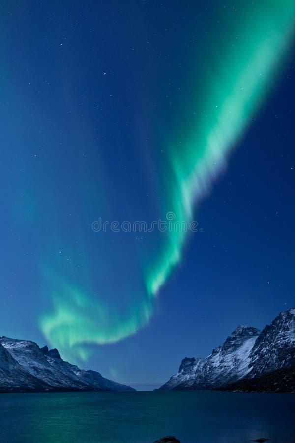 Dageraad Borealis die (Noordelijke lichten) nadenkt stock afbeelding