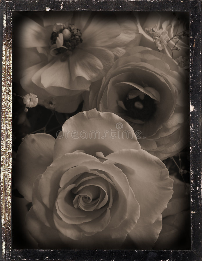 Dagguereotype repro 'wedding' royalty free stock images