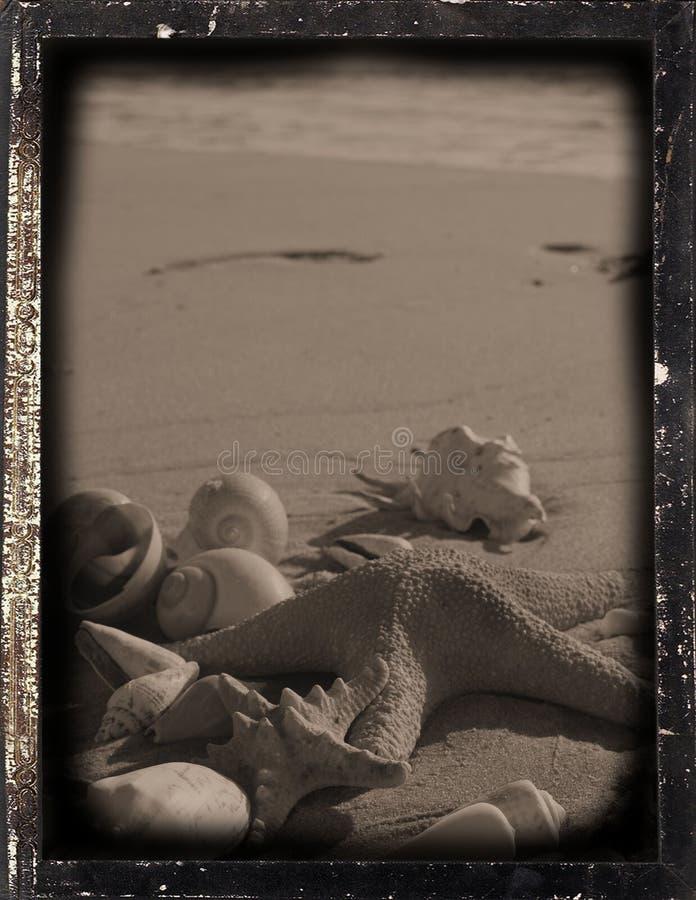 Dagguereotype reproduction 'footprints' royalty free stock photos