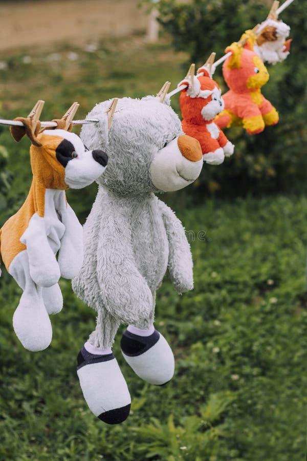 Daglicht op een drooglijn die zachte children' hangen; s speelgoed zij worden bevestigd met een wasknijper royalty-vrije stock afbeeldingen