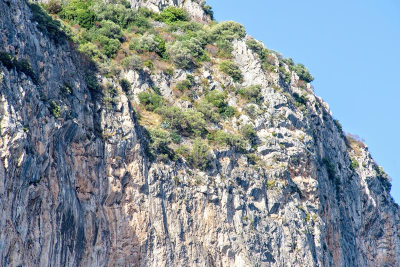 Daglichtmening van bodem aan groen bergenhoogtepunt van struiken stock foto