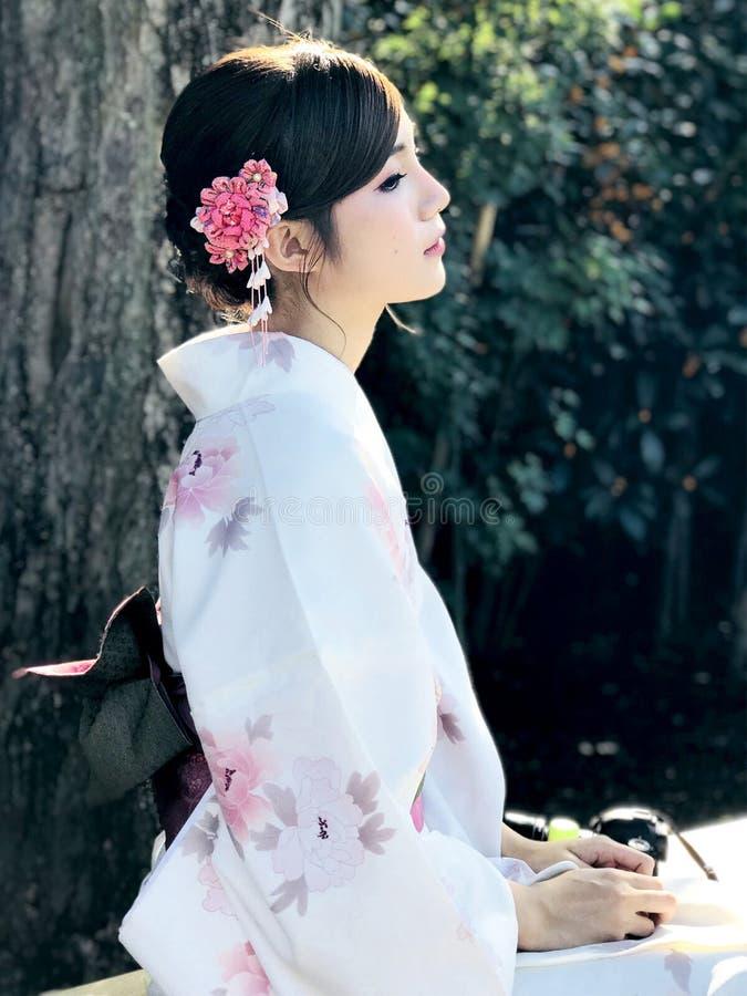 Daglichtportret van donker haar Aziatisch wijfje gekleed in traditie royalty-vrije stock fotografie