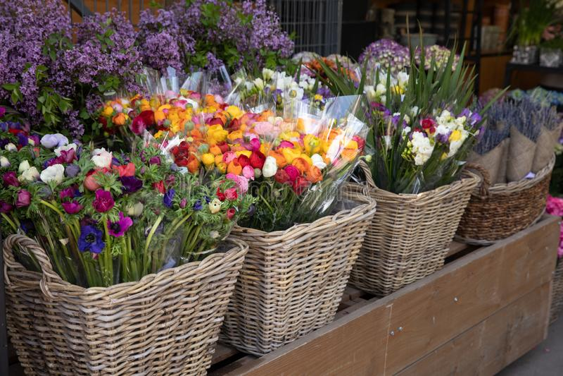 Dagliga blommor kontrar med variation av nya klippta blommor liksom anemoncoronaria, persiska sm?rblommor, freesia royaltyfri fotografi