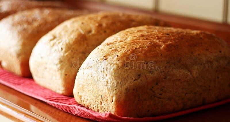 Dagligt bröd arkivbild