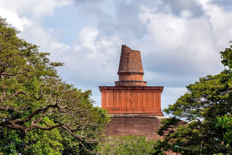 Dagoba de Jetavanaramaya en las ruinas de Jetavana imagen de archivo