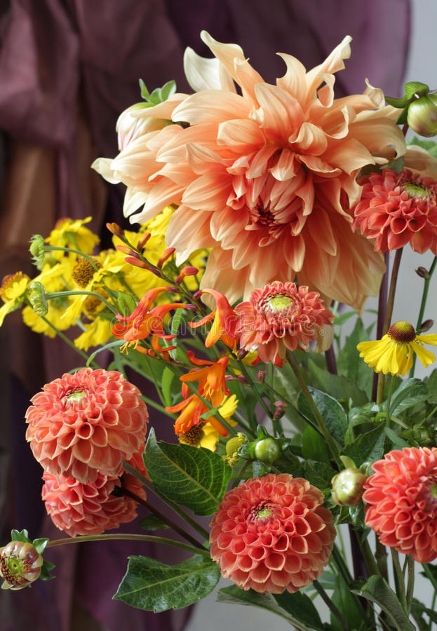 Free Dahlia Bouquet Stock Photography - 77961882