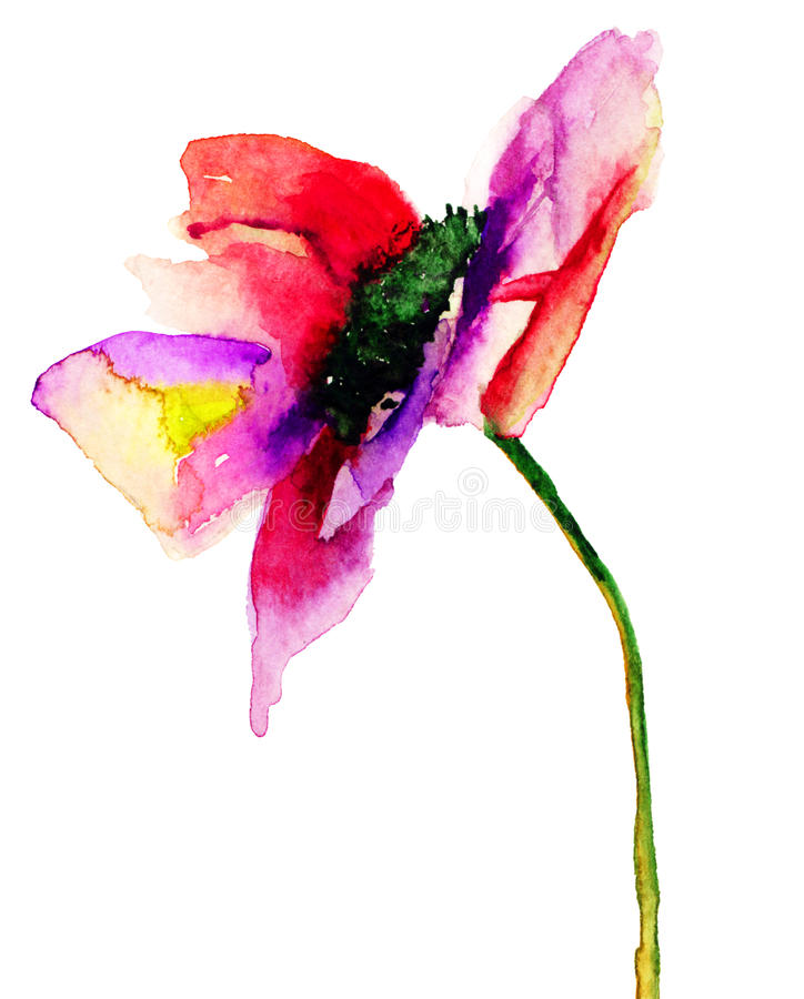 Dahlia Flower stock illustrationer