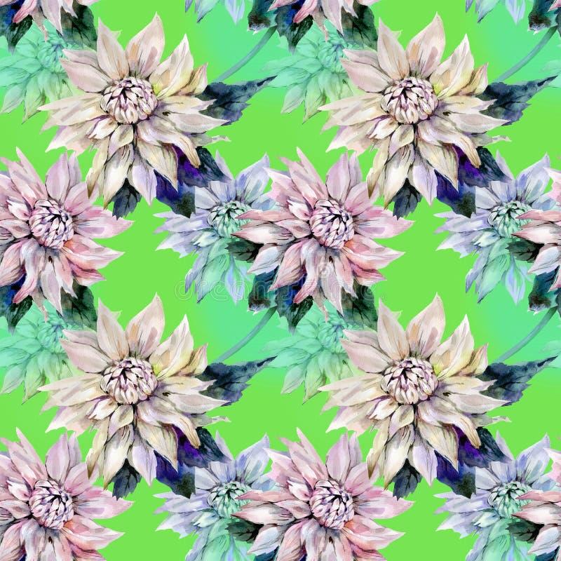 Dahlia p? gr?n bakgrund royaltyfri illustrationer