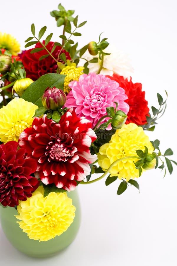 Download Dahlias bunch stock photo. Image of bunch, dahlia, freshness - 11561484