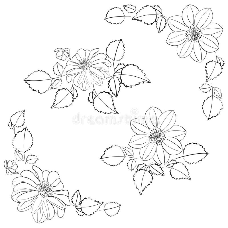 Dahlias flowers with leaves as decorations for corners and bouquet - vector set vector illustration