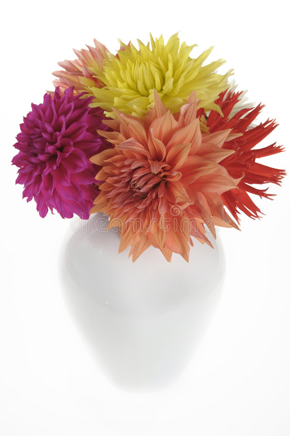 Free Dahlias In A Vase Stock Photo - 6585160