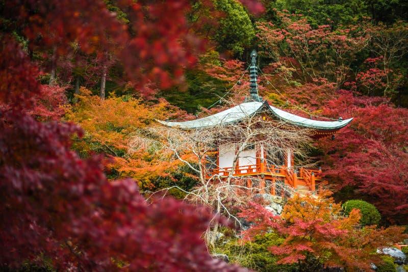 Daigoji tempel i lönnträd, momijisäsong, Kyoto, Japan royaltyfri foto