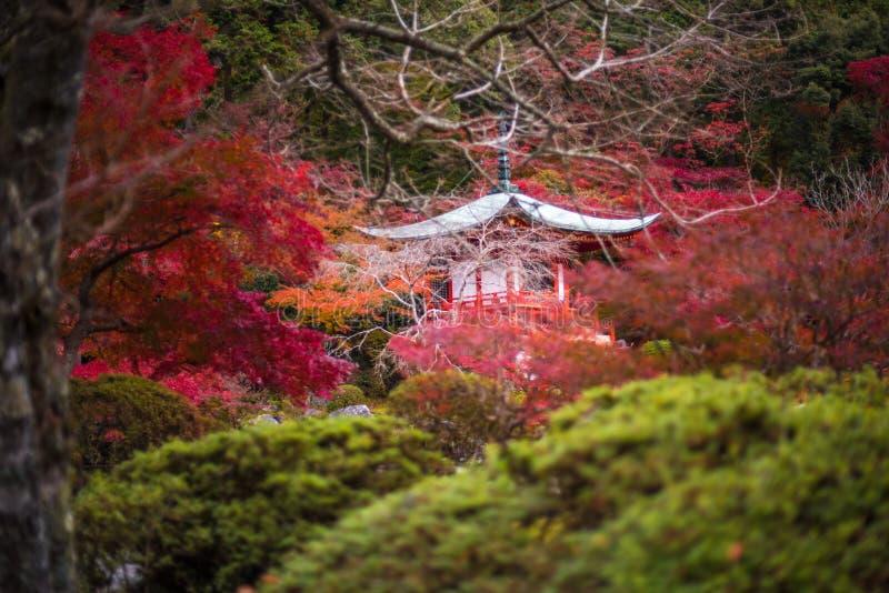 Daigoji tempel i lönnträd, momijisäsong, Kyoto, Japan royaltyfria foton