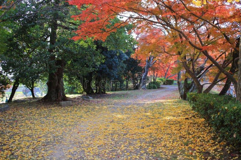 Daikakuji royalty-vrije stock fotografie