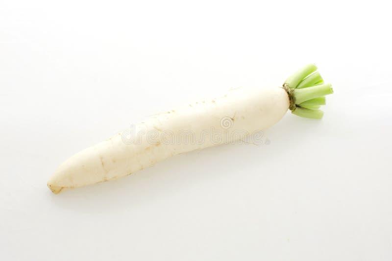 Daikon rädisor som isoleras på vit bakgrund royaltyfri fotografi