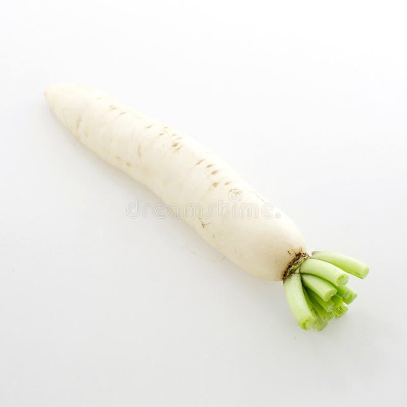 Daikon rädisor som isoleras på vit bakgrund royaltyfria foton