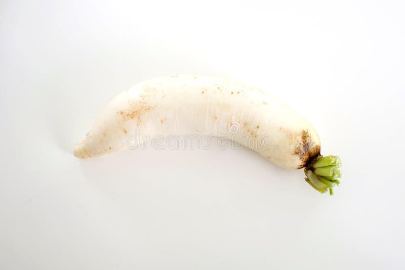 Daikon rädisor som isoleras på vit bakgrund royaltyfri foto