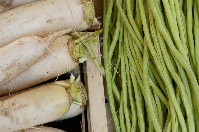 Daikon and String Beans stock photo