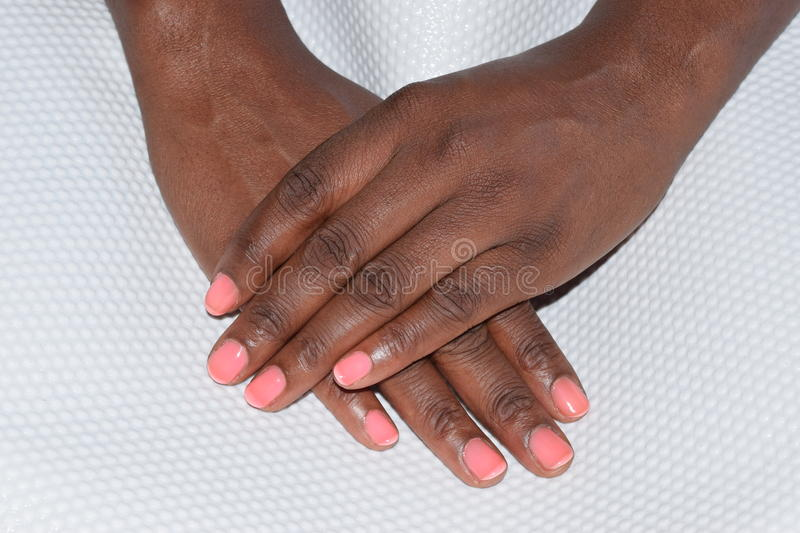 Dainty female hands with a pink manicure stock images