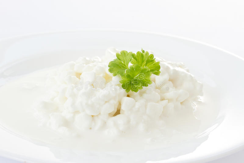 Dairy cottage cheese stock photos