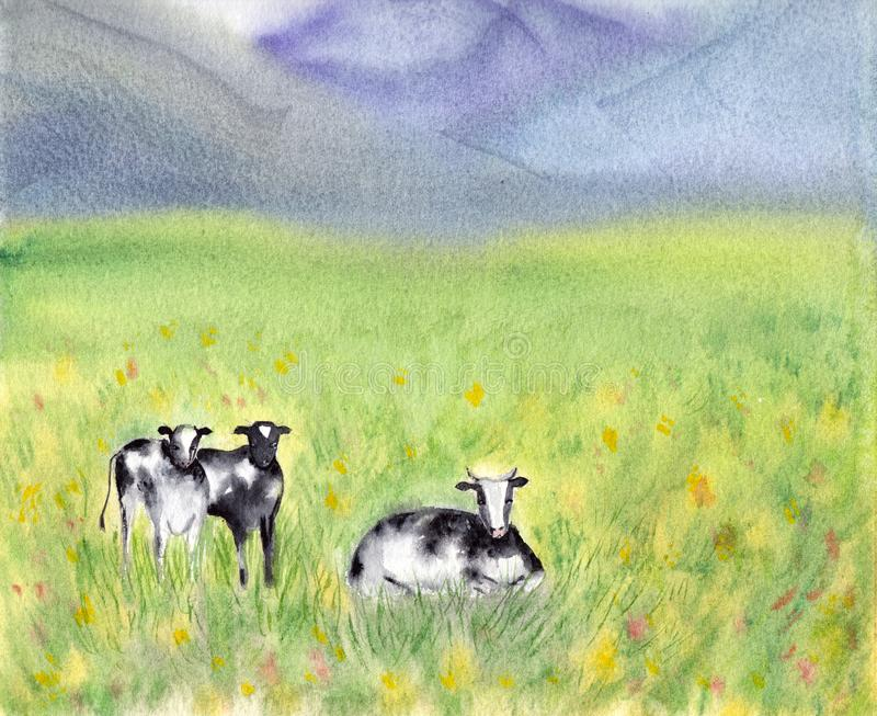 Dairy Pasturing Holstein Friesian black and white cows in a grassy field. Summer Rural scene. Alpine background. Watercolor. Illustration. Bright and sunny royalty free illustration