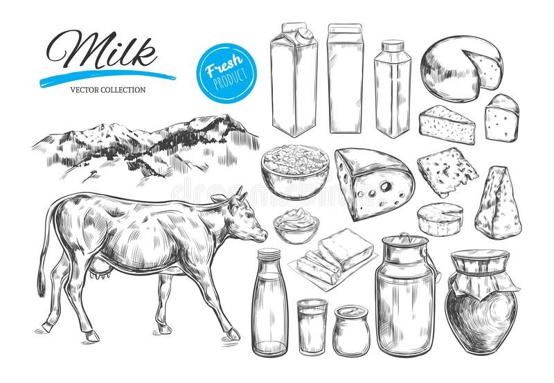 Dairy products vector collection. Cow, milk products, cheese , butter, sour cream, curd, yogurt. Farm foods. Farm landscape with c. Ow. Hand drawn illustration royalty free illustration