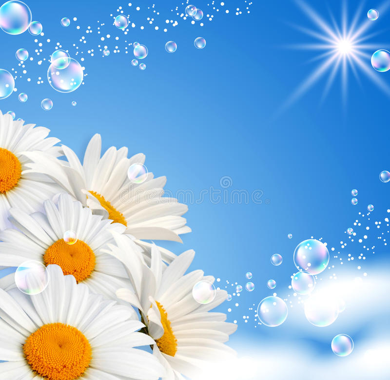 Download Daisies Against The Sky Royalty Free Stock Photos - Image: 20063578