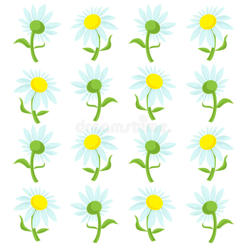 Daisies Design Pattern. Repeating pattern of the fronts and backs of daisies royalty free illustration