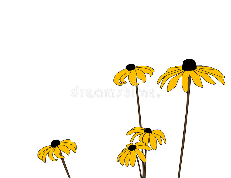 Download Daisies Five stock vector. Illustration of glorioso, susans - 8529839