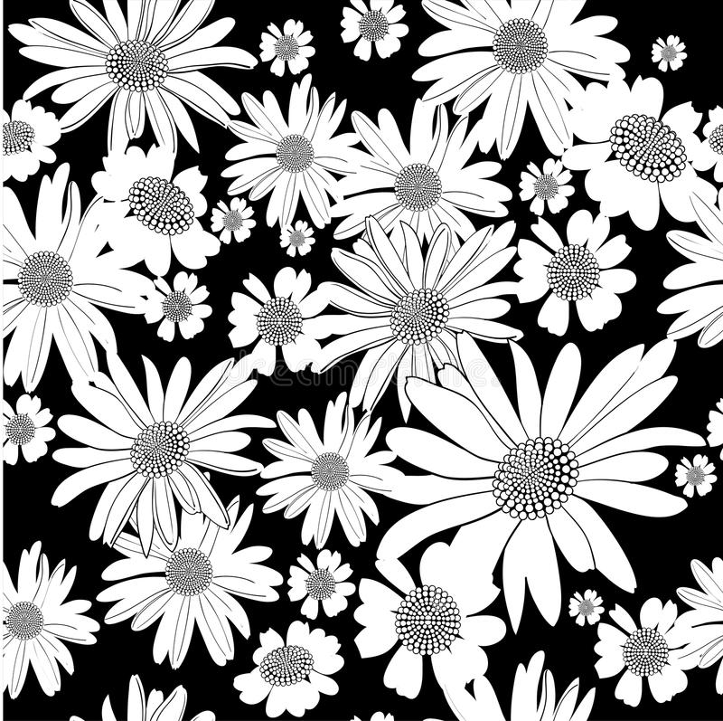 Daisies2 royalty free illustration