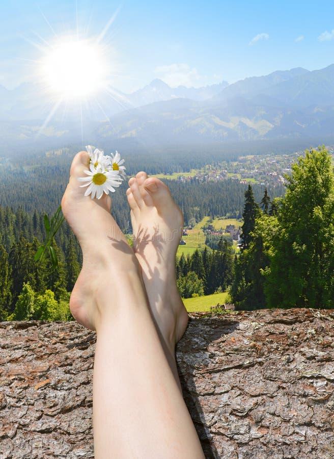 Daisy μεταξύ των toe Χαλαρώστε στη θερινή ηλιοφάνεια στοκ εικόνες με δικαίωμα ελεύθερης χρήσης